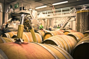 Pumping red wine into barrels.